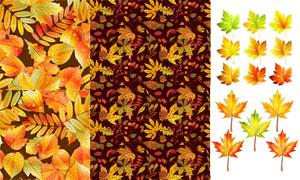 四方连续秋天树叶背景矢量素材V04