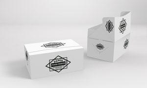 多用途包装盒图案应用效果贴图模板