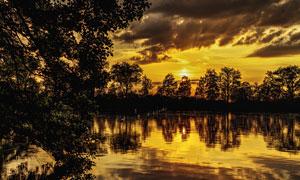 黃昏時分樹木風景主題攝影高清圖片
