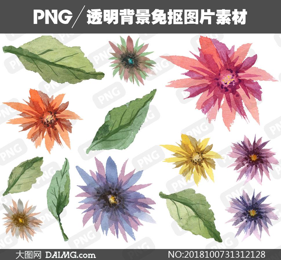 花朵树叶等手绘水彩免抠图片素材