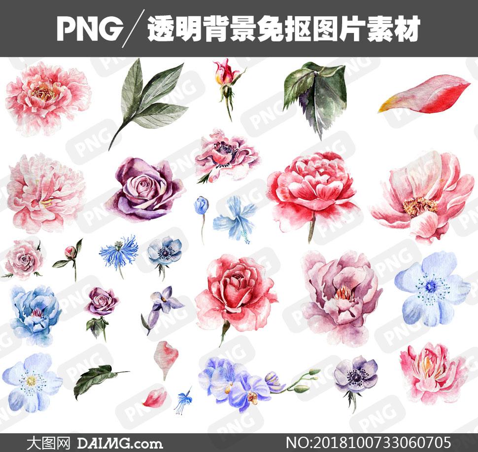 png元素免扣素材水彩素材手绘素材水彩叶子绿叶玫瑰花花朵蓝玫瑰兰花