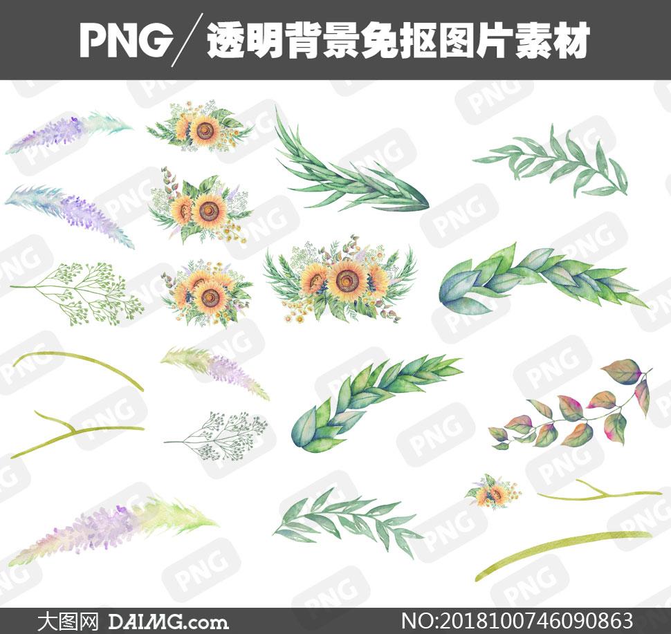 png元素免扣素材水彩素材手绘素材向日葵葵花绿叶叶子树叶树枝花草 注