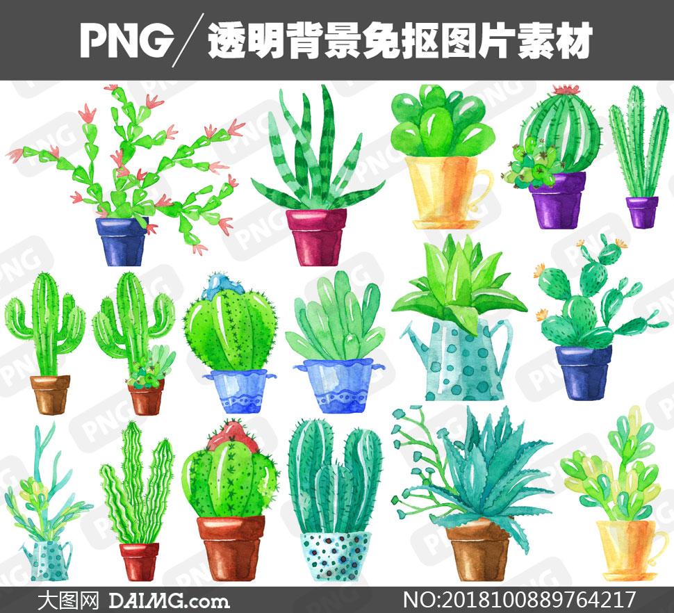 仙人掌盆栽植物等水彩创意免抠素材