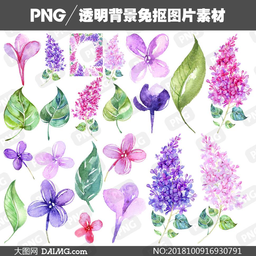 免扣素材水彩素材手绘素材树叶叶子绿叶边框丁香花紫丁香紫色粉红色