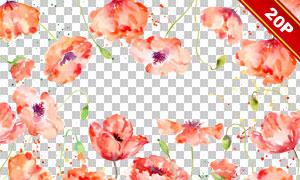 水彩花朵与墨迹喷溅元素等免抠图片