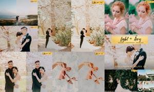 婚礼照片冷色调和粉色效果LR预设