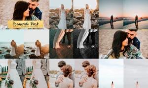 10款欧美婚礼照片暗粉色效果LR预设