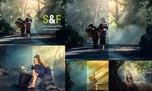 森林照片增加光线特效LR预设