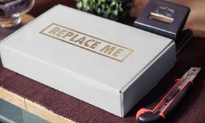 包装盒表面上的标志贴图模板源文件