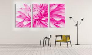 三联式鲜艳的花朵主题挂画高清图片