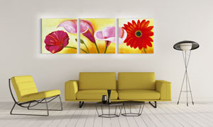 雏菊马蹄莲花朵主题无框画高清图片