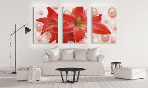 珍珠与红色百合花卉无框画高清图片