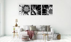 黑白花朵图案元素装饰挂画矢量素材