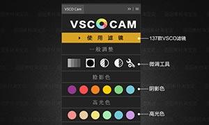 VSCO全滤镜Photoshop调色插件面板