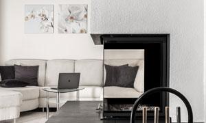 客厅沙发壁炉与装饰画效果高清图片