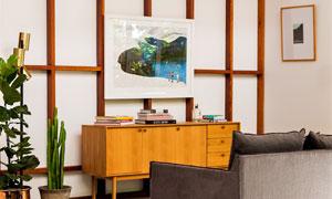 房间沙发桌子与绿植等摆设高清图片