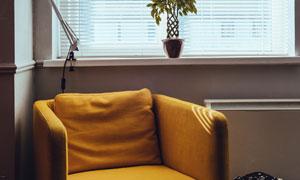 靠窗户摆放的黄色沙发摄影高清图片