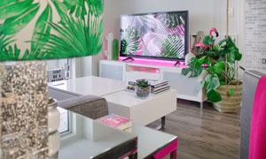 客厅电视机与绿植陈设摄影高清图片