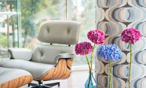 房间真皮沙发与绣球花摄影高清图片