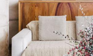 沙发装饰画与花束特写摄影高清图片