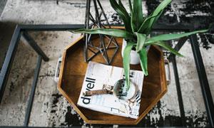 茶几托盘上的杂志植物摄影高清图片