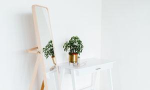 房内绿色植物与穿衣镜摄影高清图片