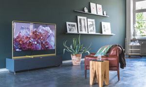 客厅沙发植物与电视机摄影高清图片
