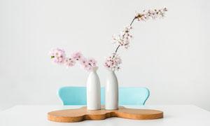 桌上白色瓷瓶里的樱花摄影高清图片