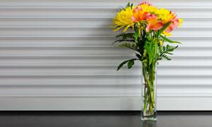 在玻璃瓶中的绿叶鲜花摄影高清图片
