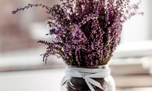 在玻璃瓶中的花束特写摄影高清图片