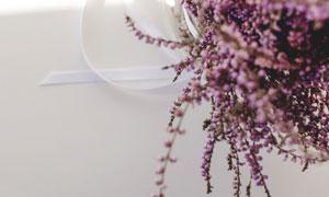 居家环境中的花束特写摄影高清图片