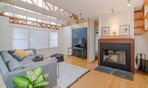 客厅电视沙发与植物等摄影高清图片