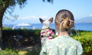 抱着狗狗看风景的美女摄影高清图片