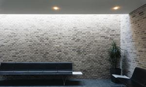 房间里的坐椅植物效果摄影高清图片