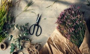 剪刀与尤加利叶等包花物品高清图片
