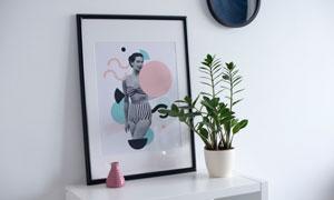 桌面上的装饰画与植物摄影五百万彩票图片