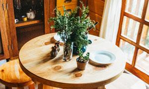 凳子与桌上的绿叶植物摄影高清图片
