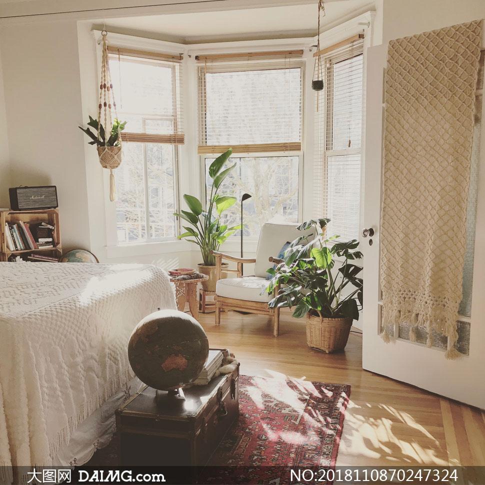 臥室陳設與綠葉的植物攝影高清圖片