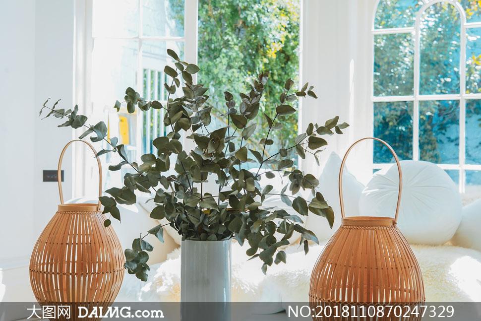 房间里的绿叶装饰用品摄影高清图片