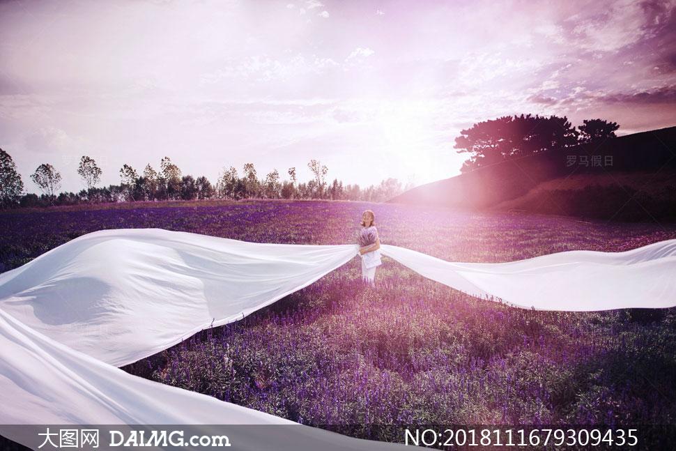抠图背景婚纱背景外景背景自然风景风光天空云彩云层多云紫色树木阳光