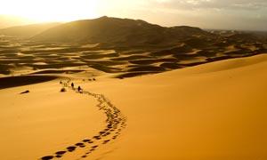 美麗的沙漠和沙丘高清攝影圖片