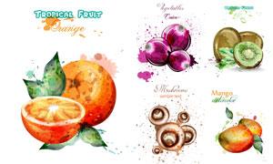 芒果与洋葱等蔬果水彩创意矢量素材