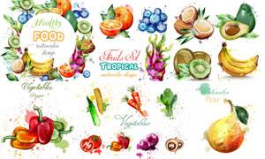 水彩蓝莓与香蕉等水果蔬菜矢量素材