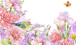 蝴蝶与花枝上的小鸟等水彩高清图片