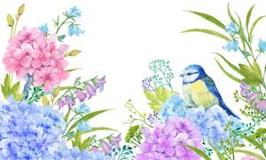 小鸟与多彩的花朵水彩效果高清图片