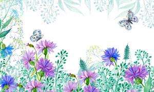 水彩质感鲜花与蝴蝶等背景高清图片