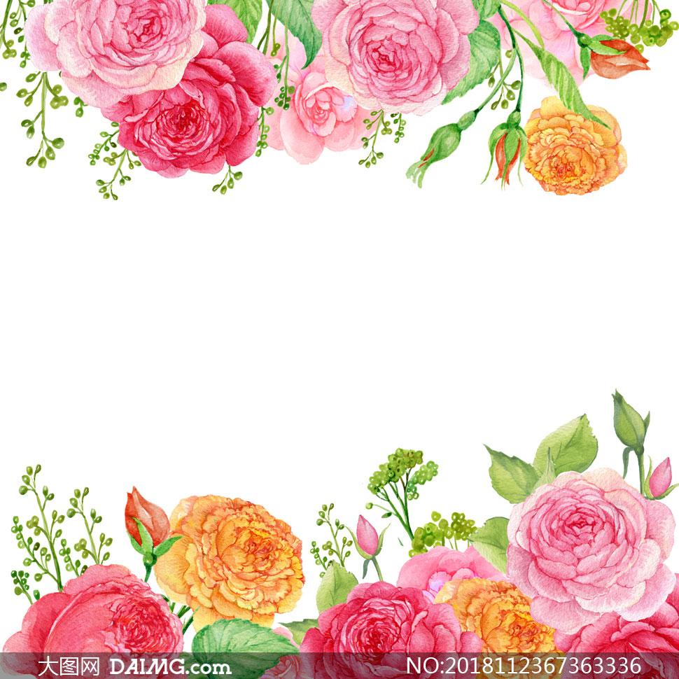 水彩绿叶与鲜艳的红花边框高清图片