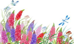 水彩手绘质感效果花卉植物高清图片