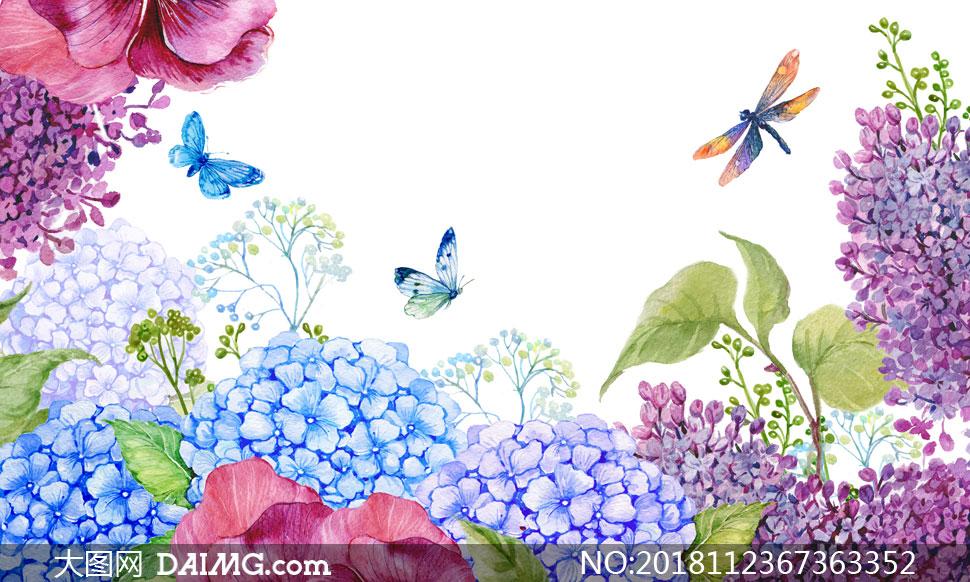 紫色丁香花等花卉植物水彩高清图片