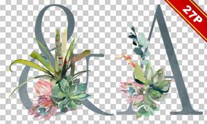 仙人掌裝飾的英文字母創意免摳圖片
